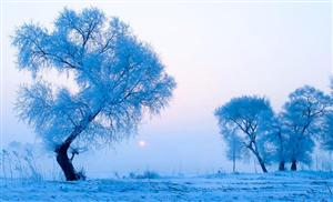 爱在雪乡 哈尔滨-亚布力激情滑雪-二浪河秧歌篝火晚会-双飞6日游
