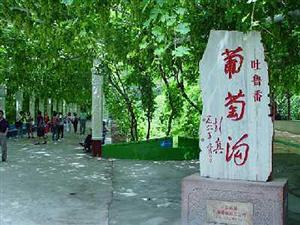 【新疆甘肃青海专列】畅游丝绸之路空调火车9日游